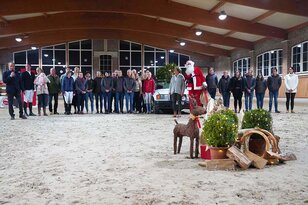 New stallions convinced at Breeders' Advent
