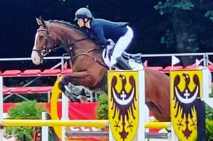Successful eventer by Lordanos
